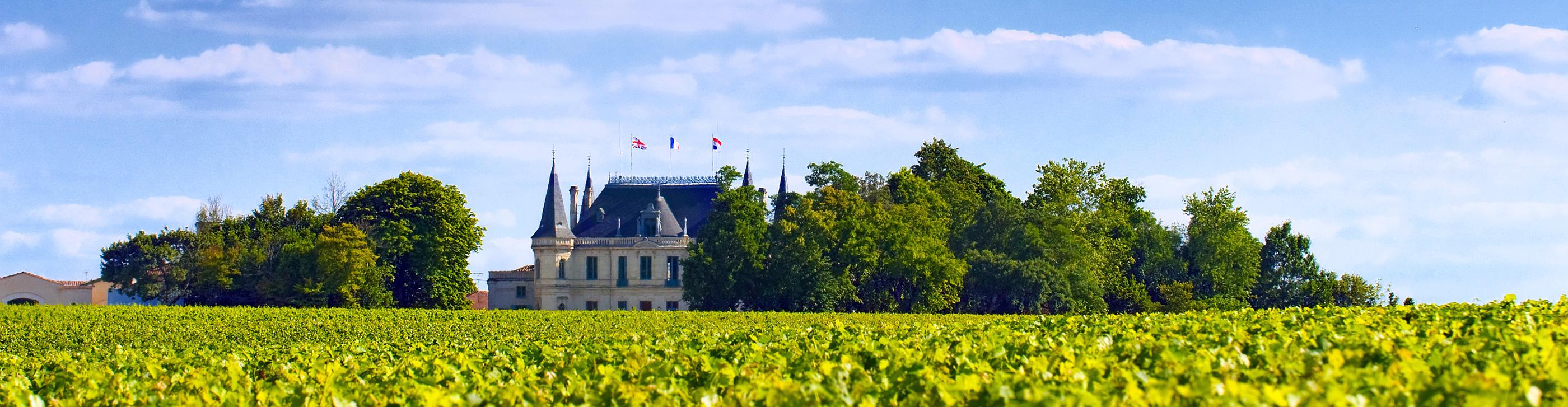 Photograph of Brilliant Bordeaux
