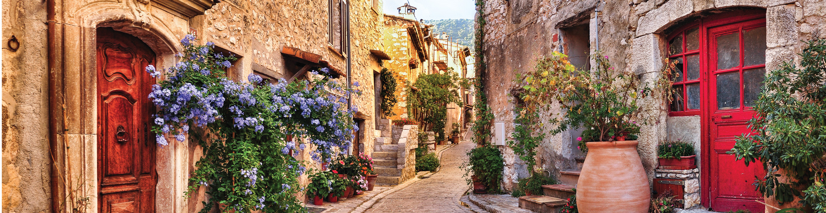 Photograph of Burgundy & Provence